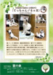 てっちゃん 募集ポスター20191003.jpg