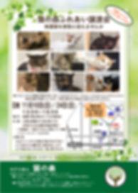 191110譲渡会告知ポスター.jpg