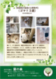 ゴマ 募集ポスター20191123.jpg