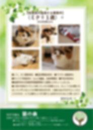 ミク 募集ポスター20191124.jpg