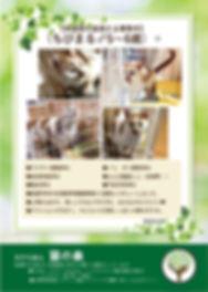 ちびまる 20190424 募集ポスター(多頭飼育の猫編).jpg