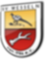 logo SV Wesseln.png