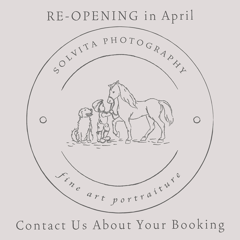Norfolk dog photographer studio re-opening book photo session