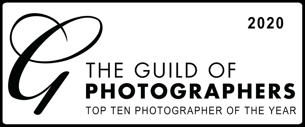 Norfolk dog photographer top 10 pet international 2020