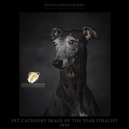 "We are ""Pet Category Image of the Year Finalist 2020"""