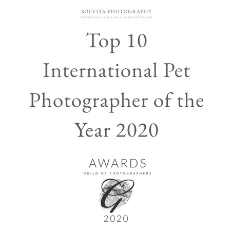 Top 10 International Pet Photographer of the Year 2020