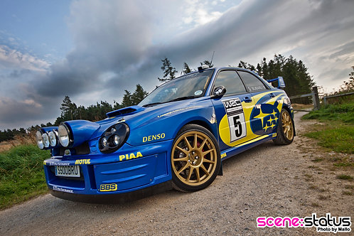 BUGEYE WRC STYLE FRONT WINGS (PAIR)