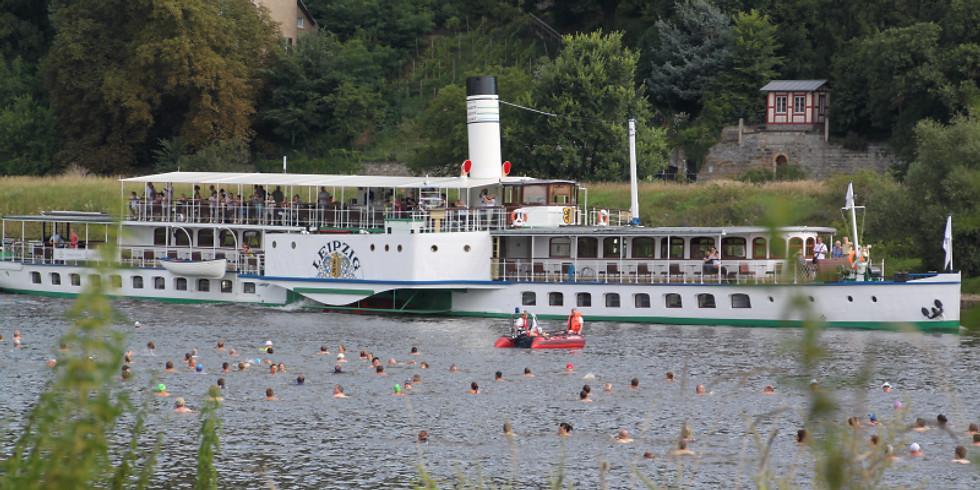 Elbeschwimmen 2021