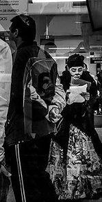 gato-metro.jpg