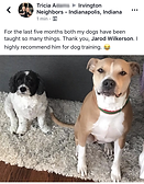 Screenshot of a review of my business posted to Facebook with an image of the client's 2 dogs