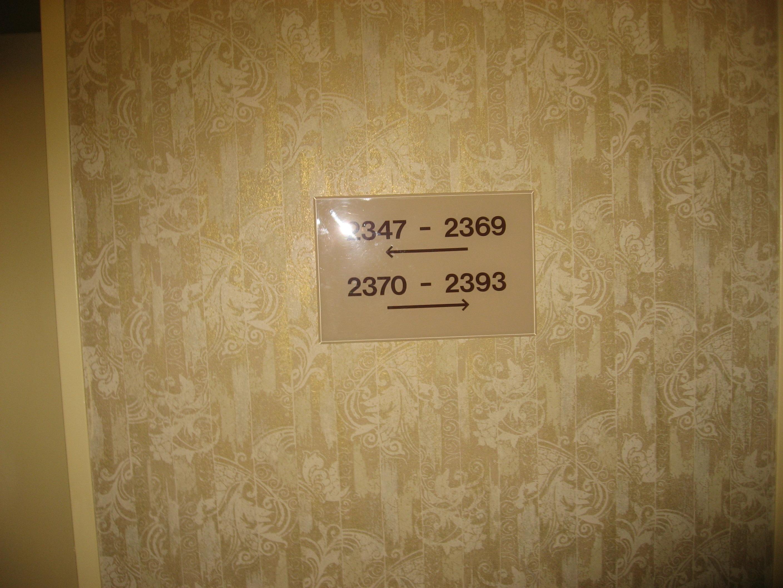 389.JPG