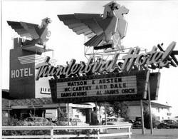 Thunderbird Bird.jpg