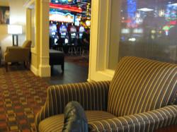 Casino Royal (23).JPG