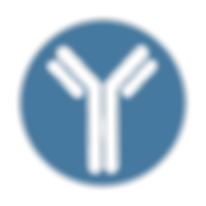 Icon of an antibody, transparent, used to identify the Antibody Database of the Blind Lab, Ray Blind Vanderbilt University