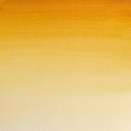 Winsor & Newton Professional Watercolour 14ml - Raw Umber (SR- 1)