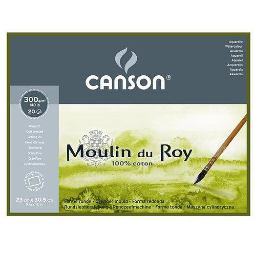 Canson Moulin du Roy 300 GSM 4 Side Glued Pad - 20 Fine Grain.