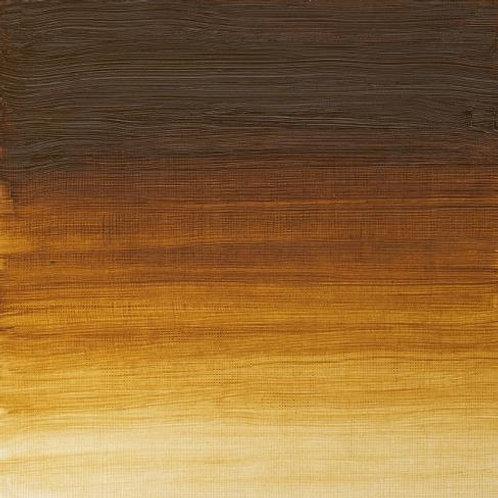 Winsor & Newton Artist Oil Colour Raw Umber Light - 37ml (557)