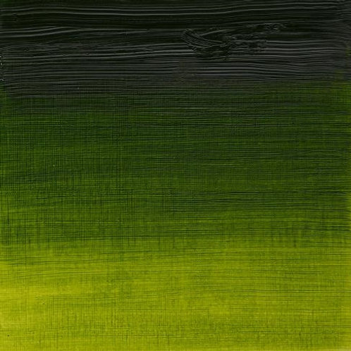 Winsor & Newton Artist Oil Colour Sap Green - 37ml (599)