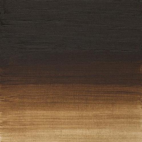 Winsor & Newton Artist Oil Colour Raw Umber - 37ml (554)