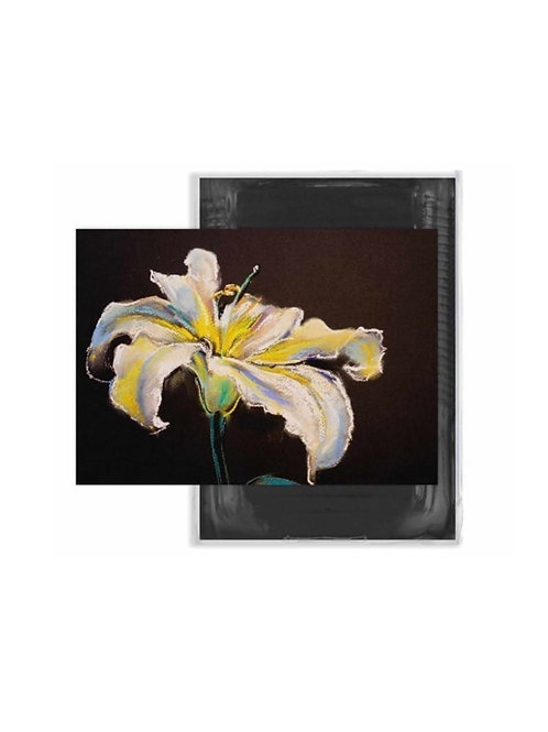 Anupam Black Tinted Loose Sheets 200gsm - A4