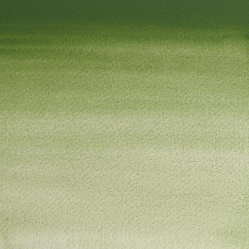 Winsor & Newton Professional Watercolour 14ml - Oxide Of Chromium (SR- 3)