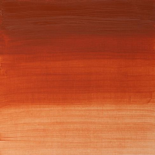 Winsor & Newton Artist Oil Colour Transparent Red Ochre - 37ml (647)