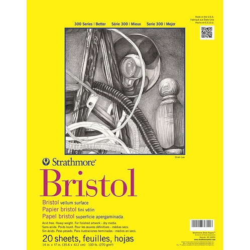 """Strathmore 300 Series Bristol 14""""x17''270 GSM Paper - Pad of 20 Sheets"""