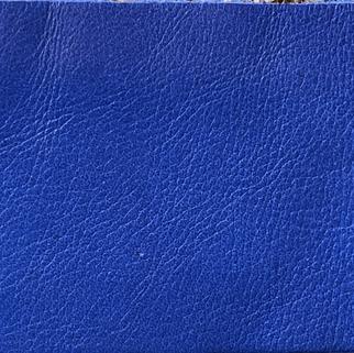 Bleu roi N°555