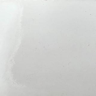Vernis lisse blanc N°81