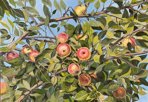 "Картина холст масло ""Яблоки на ветке""  Размер 60х70 2020 год"