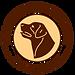 Logo Flame of Westfalia