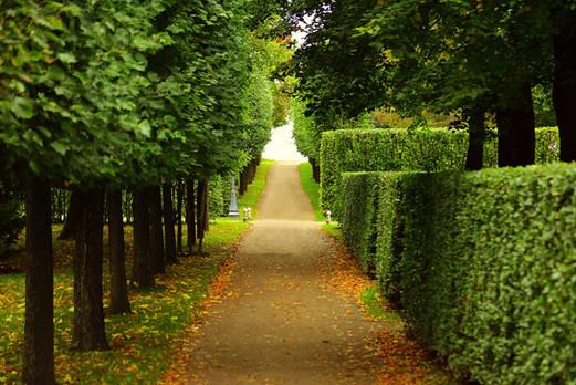 walkway-2550655_1920.jpg