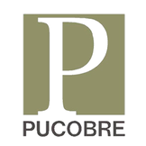 Sociedad Punta del Cobre.png