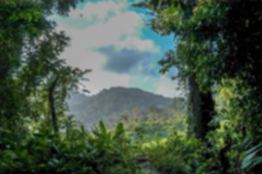 Jungle mountains of the Darien gap
