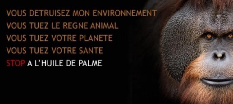 NON à l'huile de palme!!! STOP!!
