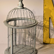 CAGE (1)