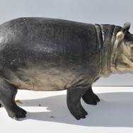 BEBE HIPPO 70cm