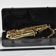 INSTRUMENT DE MUSIQUE (6) Saxophone Arla