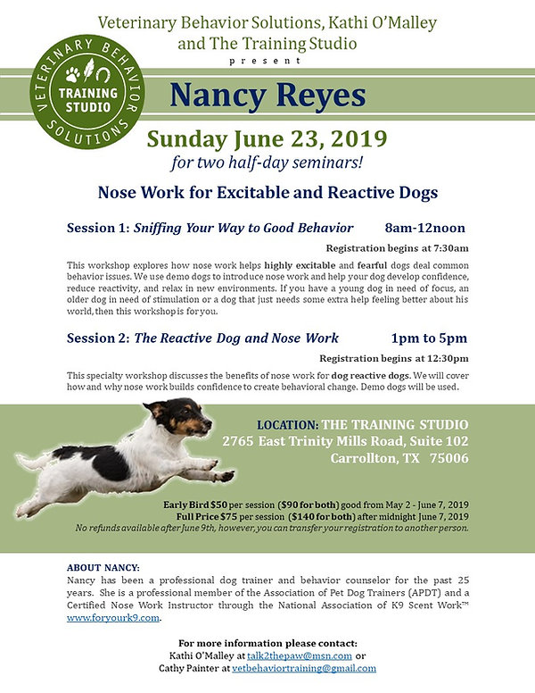 Flyer for Nancy Reyes--no hyperlink.jpg