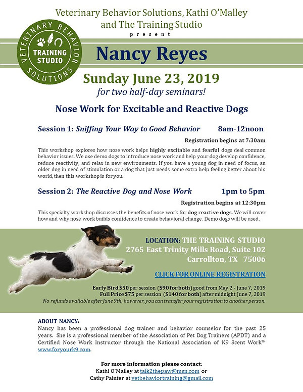 Flyer for Nancy Reyes2.jpg