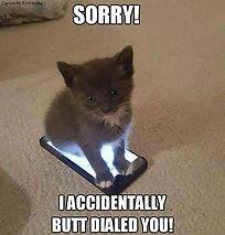 kitten-meme-cat-caption-by-kittyworks-so