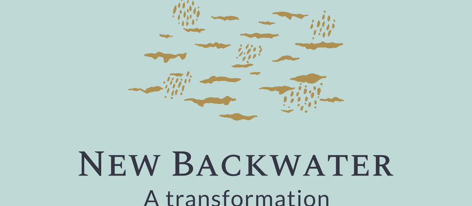 New Backwater is turning 1!