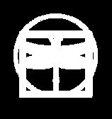 white dragonfly WEB logo.png