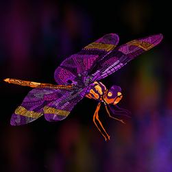 Dragonfly in Indigo