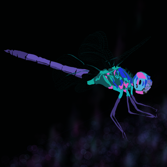 Dragonfly in Sapphire