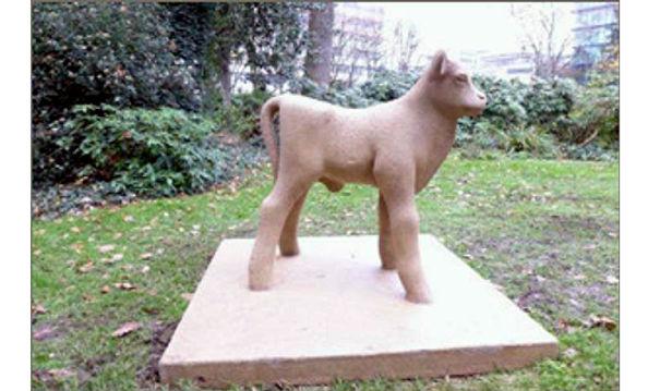 Armand Petersen - Petit veau nouveau né