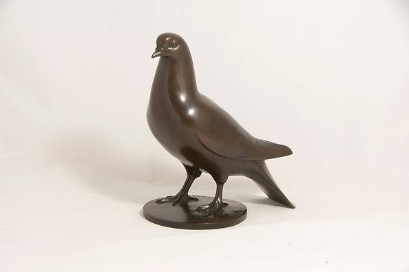 Armand Petersen - Pigeon Ramier