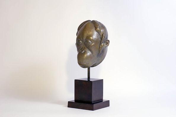 Armand Petersen - Tête de Singe