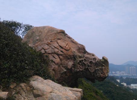 Rhino rock in Stanley