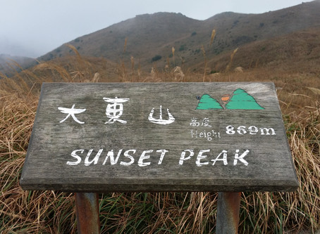 Sunset Peak - Golden Silver Grass